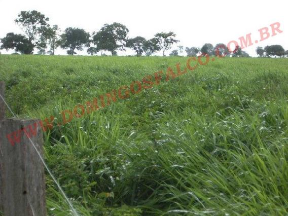 Venda - Fazenda - Zona Rural - São Félix Do Araguaia - Mt - D0092