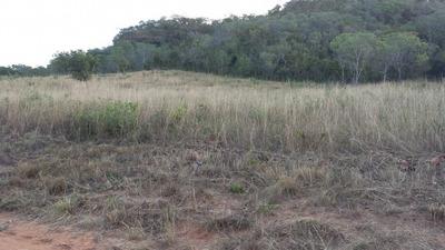 Fazenda Em Ponte Alta - To 102 Alq. P/ Pecuária - 457