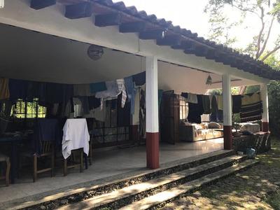 Ojo Vendo Excelente Casa 2.500 M2 De Terreno Centro Tepozt