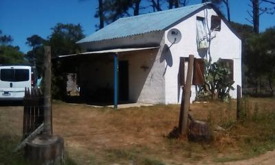 Casa En La Paloma-rocha A 1 Cuadra De 13 Y Paloma