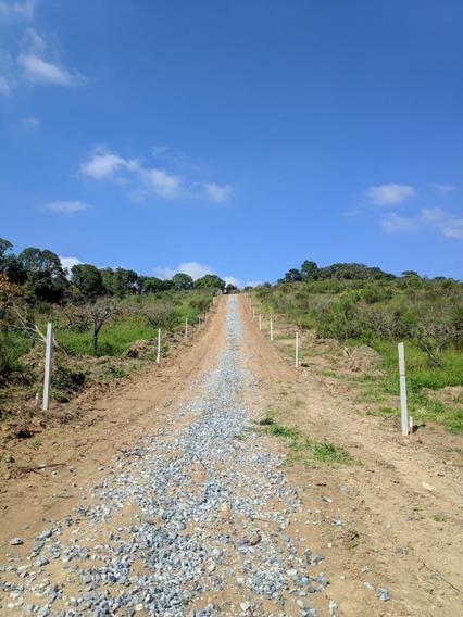 Terrenos Com Valor Facilitado Por Tempo Limitado B