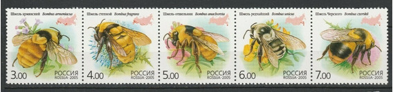 2005 Insectos- Abejas- Rusia- Mnh