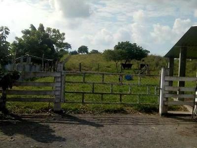 Rancho En Venta El Brillante