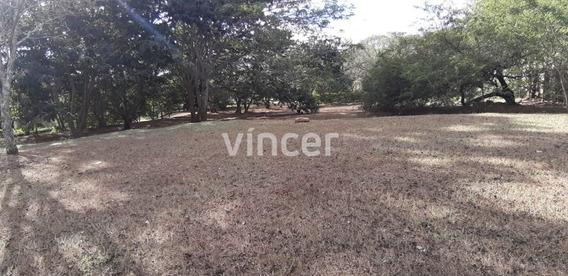 Terreno - Residencial Aldeia Do Vale - Ref: 79 - V-79