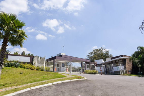 Terreno Em Santa Isabel - Rg6582