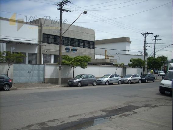 Comercial Para Aluguel, 0 Dormitórios, Água Branca - São Paulo - 3833