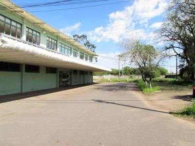 Terreno Residencial À Venda, Vila Carlos Antônio Wilkens, Cachoeirinha. - Te0004