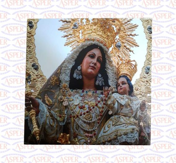 Azulejo Exterior/interior 20x20 Ó 15x15 Virgen Del Rosario