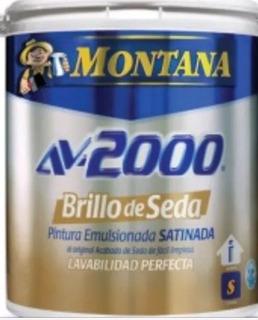 Pintura Montana Blanco Brillo De Seda Clase A