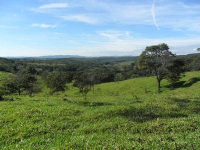 Fazenda Em Caseara - To, Dupla Aptidão - 289