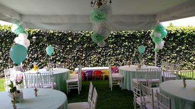 Hermoso Jardin En Coyoacan Para Fiestas