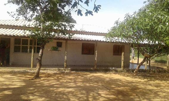 Fazendas E Chácaras