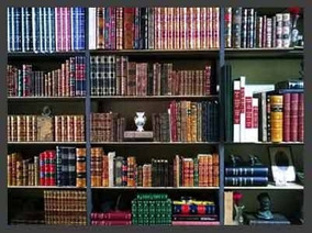 Lote De Livros 40 Autores Da Literatura Brasileira