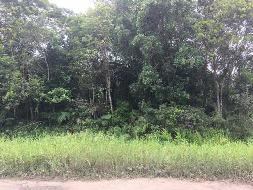 Terreno A 300mts Da Rodovia Em Itanhaém-sp