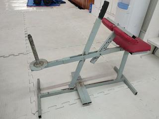 Maquina Gym Gemelos Sentado