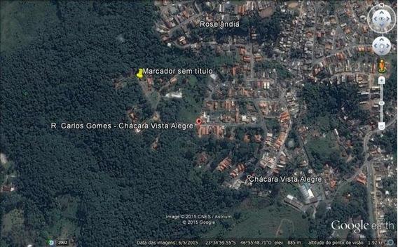 Terreno Residencial À Venda, Chácara Vista Alegre, Cotia - Te0181. - Te0181