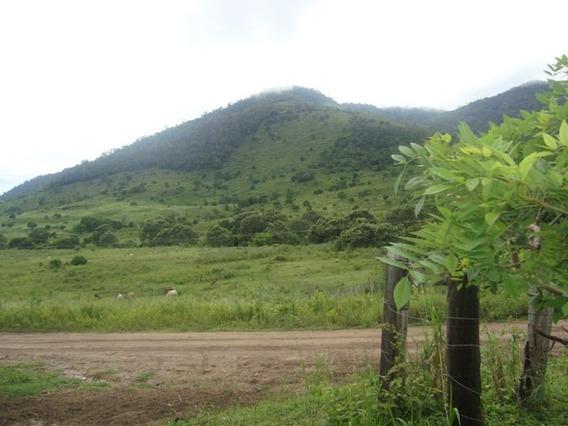 Vendo Fazenda De 187 Hec Na Regiao Sul Da Bahia (400010118)
