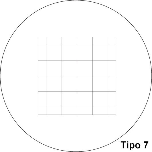 Retículo Ocular De Microscópio Lupa Para Contagem