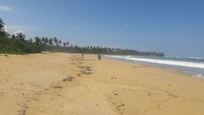 Terreno Turístico En Playa El Limón