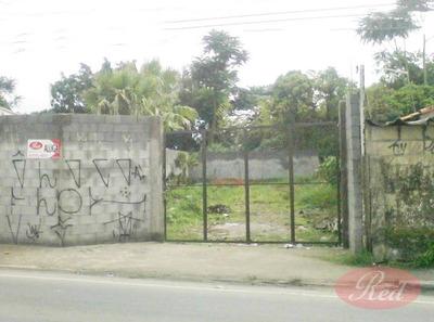 Terreno Comercial Para Locação, Vila Maria De Maggi, Suzano. - Te0165
