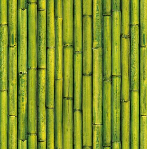 Papel Muresco Vinilizado Zen 34761 Bambu Soul