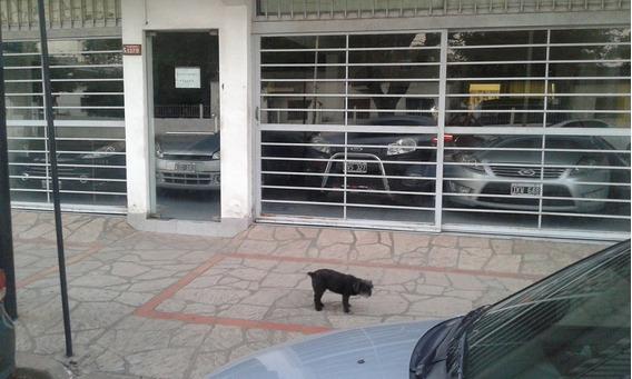 Local Comercial Con Vivienda Alquilo