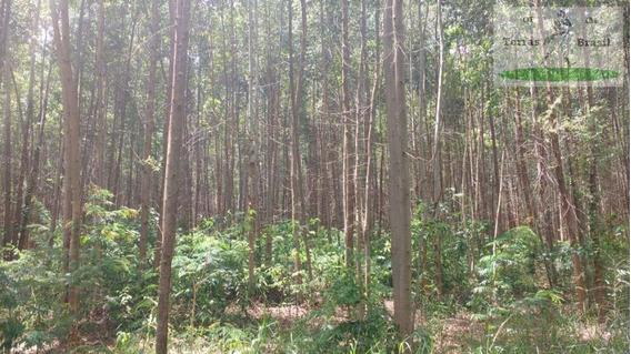 Sítio Para Venda Em Avaré, Rural - Sta 063
