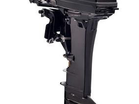 Motor - 25 M Sea Pro 2t - Oferta