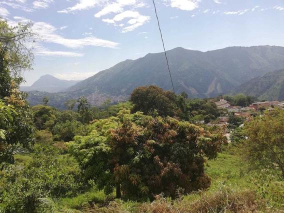 Lote En Venta Amagá Antioquia Se Vende
