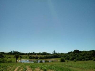 Sitio 2,5 Hectare, 2 Casas, Açude. 1 Km Da Rs 040, Exclusivo