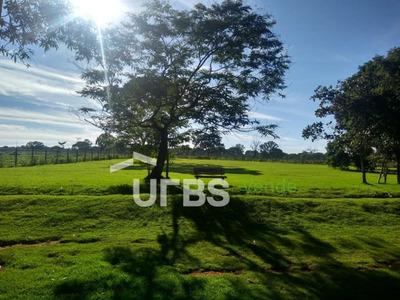 Excelente Chácara - Bela Vista De Goiás - Ch0056