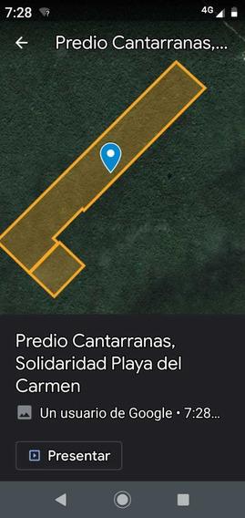 Excelente Terrenos Playa Del Carmen