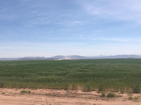Venta De Terrenos Agrícolas Chih.-cd.juárez $6,000,000