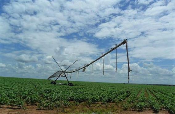 Fazenda De Grãos E Pecuária Com 618 Has Em Barreiras - Fa0062