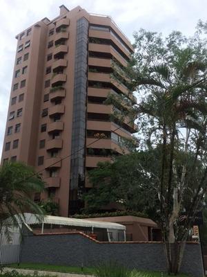 Apartamento No América Com 3 Quartos Para Locação, 349 M² - Lg1295