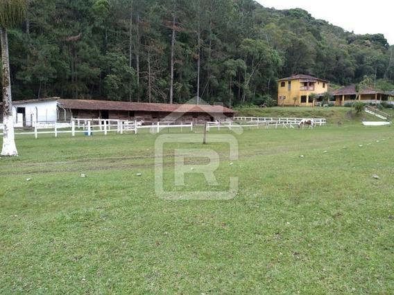 Sitio Rico Em Água, Piscina Com Água Natural, Ideal Para Moradia! - 03 - 34652497