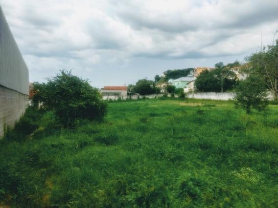 Area - Jardim Sao Luiz - Ref: 730 - V-730