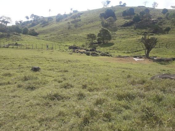 Fazenda Para Venda Em União Dos Palmares, Zona Rural - Fz - 093_1-1264631