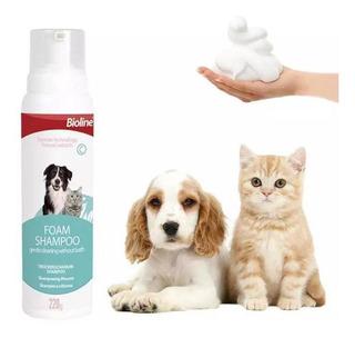Baño Seco Para Perros Y Gatos Cachorros Espuma