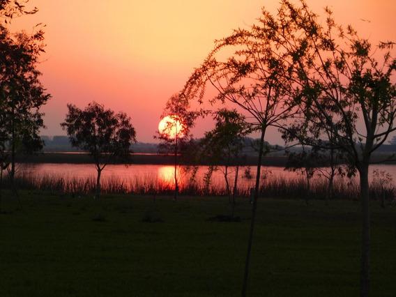 Chacra En Laguna Vitel, Chascomus.