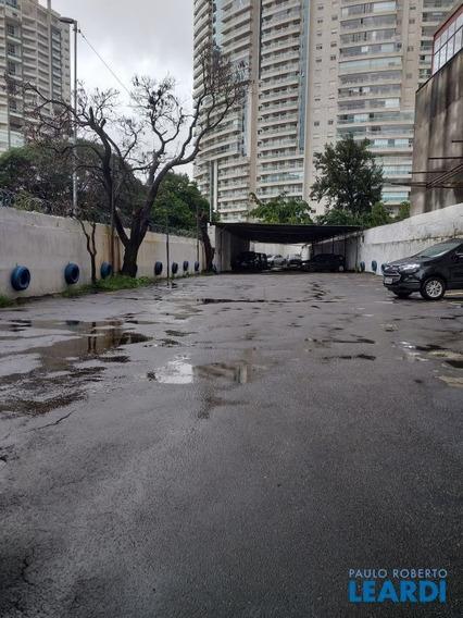 Terreno - Pinheiros - Sp - 596958