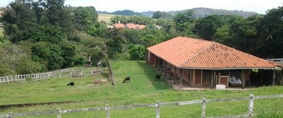 Excelente Sitio Com Laticínio E Haras À Venda Em Itupeva, Sp - Ch0071