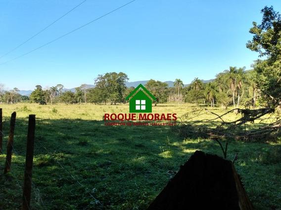 Sitio Miracatu 7 Alq Paulista Plano Bom P/criação Ref:0081