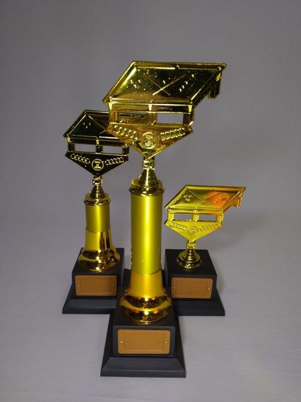 Troféu Personaliz. Sinuca/bilhar -kit Com 3 - 41, 35 E 21 Cm