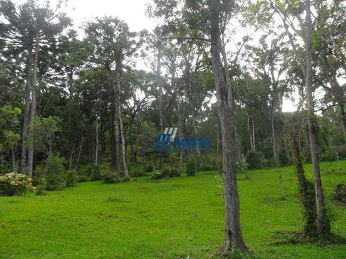 Chácara Á Venda, 42199 M² Por R$ 690.000 - Borda Do Campo - São José Dos Pinhais/pr - Ch0178
