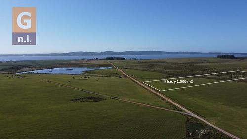 Campos Y Fracciones En Punta Del Este (laguna Del Sauce) -  Ref. 4618