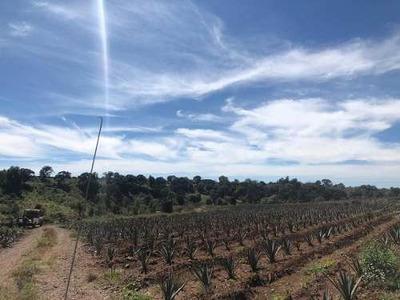 Rancho En Venta En Santiaguito De Velazquez