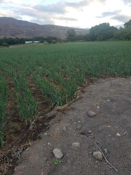 Oportunidad Hectarea De Terreno Santa Isabel Sector Jubones