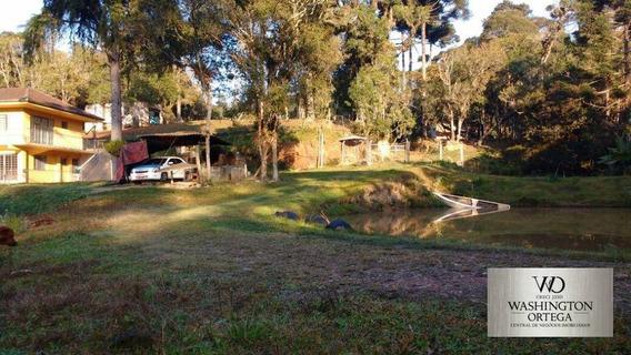 Chácara Com 3 Dormitórios À Venda, 29000 M² Por R$ 690.000 - Campo Largo Da Roseira - São José Dos Pinhais/pr - Ch0023