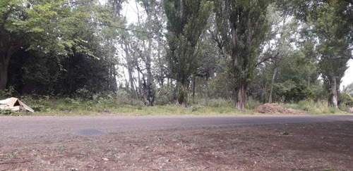 Imagen 1 de 7 de Finca En Blanco En Las Paredes San Rafael Menoza